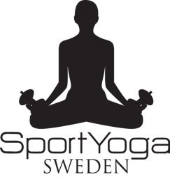 cropped-viki-logo_svartalex3.jpg